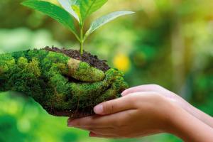 Día Mundial del Medio Ambiente en Guatemala
