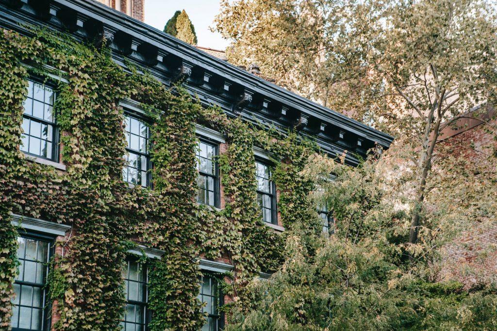 edificio_sustentable