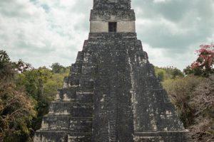 vista de una pirámide en Tikal