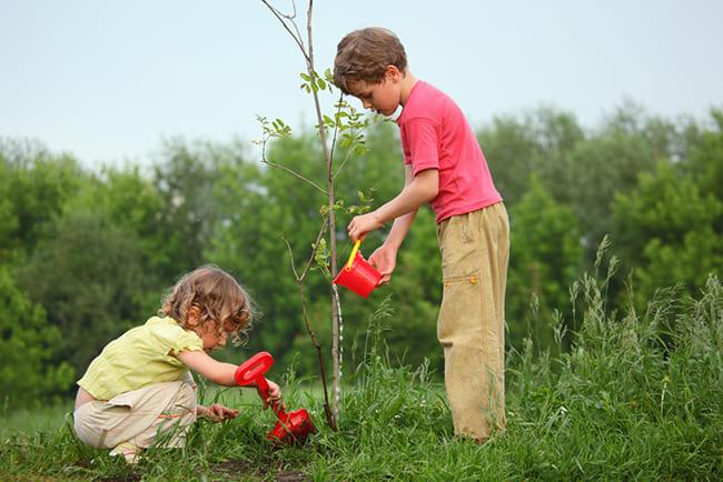 enseña a tus hijos a cuidar el medio ambiente